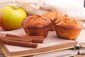 Muffins with apple and cinnamon red sticks on open book Stock Photography