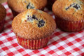 Muffins with a bilberry Royalty Free Stock Photography