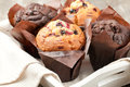 Muffins blueberry and chocolate in paper cupcake holder Royalty Free Stock Photo