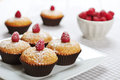 Muffins with bran diet and fresh raspberries on plate Stock Photos