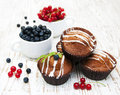 Muffins freshly baked with dish of blueberries and redcurrants Stock Photography