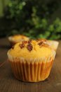 Muffins with nuts Royalty Free Stock Photo