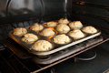 Muffins in the oven on a baking tray Stock Photography