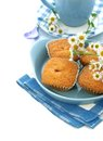 Muffins on plate, cup of tea and chamomile Stock Photos