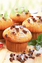 Muffins topped with chocolate shavings Royalty Free Stock Image