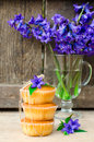 Muffins on a wooden table with flowers hyacinth Royalty Free Stock Images