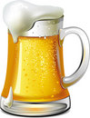Mug of beer Stock Image