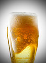Mug of beer foamy poured into the jug Royalty Free Stock Photos