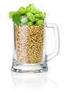 Mug for beer full of barley and hops  on white Royalty Free Stock Photo
