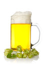 Mug of beer with hop Royalty Free Stock Photo
