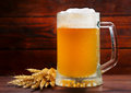 Mug of beer with whea wheat on wooden table Royalty Free Stock Photos