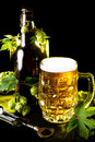 Mug of golden beer bottle and openner with hop leaves over black Stock Image