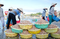 Mui ne vietnam febr mui ne popular tourist attraction vietnam lot fishers sort out their catch shore sell fish to dealers feb mui Stock Photo