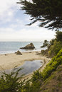 Muir Beach, northwest of San Francisco Royalty Free Stock Photo