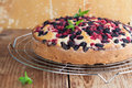 Mulberry and red currant cake Royalty Free Stock Photo
