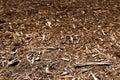 Mulch Background Royalty Free Stock Photo