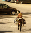 Mule at the streets of Fez Medina, Morocco Stock Photos