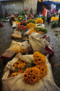 Mulik Ghat Flower Market 1 Stock Images