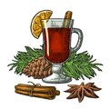 Mulled wine with glass and ingredients. Royalty Free Stock Photo