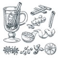 Mulled wine recipe, vector sketch illustration. Set of isolated hand drawn spices, ingredients.