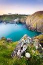 Mullion Cove Cornwall Stock Image