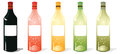 Multi color wine bottles pack a illustrations of with blank labels Stock Images
