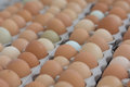 Multi-colored eggs at a farmers market in California. Organic. Royalty Free Stock Photo