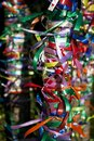 Multi-colored ribbons on a tree