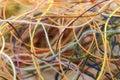 Multi-colored tangled colorful needlecraft silk thread rope. Mac