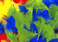 Multi coloured feathers background Royalty Free Stock Photo