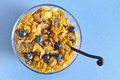 Multi grain cereal breakfast Stock Photography