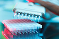 Multi pipette in microbiology laboratory Royalty Free Stock Image