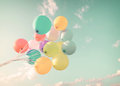 Multicolor Balloons In Summer ...
