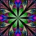 Multicolor Beautiful Fractal I...