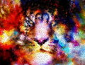 Multicolor cosmic tiger face collage, computer graphic with mosaic effect.