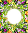 Multicolor flowers round with green leaves border isolated on white background Royalty Free Stock Photography