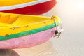 Multicolor rowboat or sea kayaks on beach with copy space. Royalty Free Stock Photo