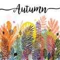 Multicolor trendy tropical autumn background, exotic leaves. Vector botanical illustration, Great design element for Royalty Free Stock Photo