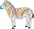Multicolor Zebra Royalty Free Stock Images