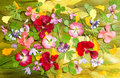 Multicolored applique clearing of dried pressed flowers Royalty Free Stock Photo
