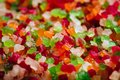 Multicolored candied fruit on full frame close-up. Tutti-Frutti, served in a bowl, selective focus. Royalty Free Stock Photo