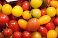 Multicolored cherry tomatoes for cocktail party yellow and red Stock Photography