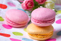Multicolored macaroon on colorful tablecloth near flowers Stock Image
