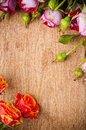 Multicolored roses on a wooden board Royalty Free Stock Images