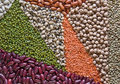Multicoloured legumes Obrazy Stock