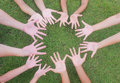 Multicultural hands children and adult with green grass background Royalty Free Stock Image