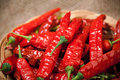 Multitude of red chili peppers Stock Image