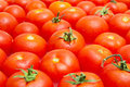 Multitude of tomatoes close-up Royalty Free Stock Photography