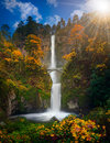 Multnomah Falls in Autumn colors Royalty Free Stock Photo