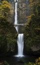 Multnomah Falls Royalty Free Stock Photo